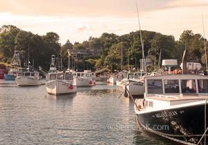Perkin's Cove ©SeleenaK.com
